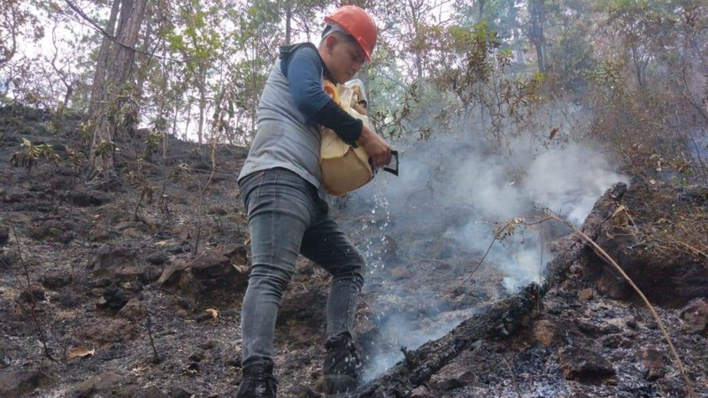 In El Salvador, Young People Assist in Battling Forest Fires Across Mountainous Region